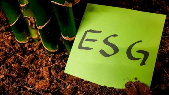 A global wake-up call: unpicking the complexities of ESG